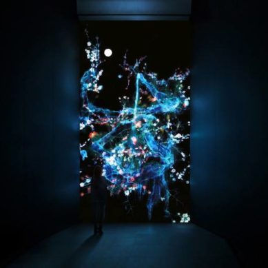 Works of / 'Ultra subjective space' by Tokyo based TeamLAB