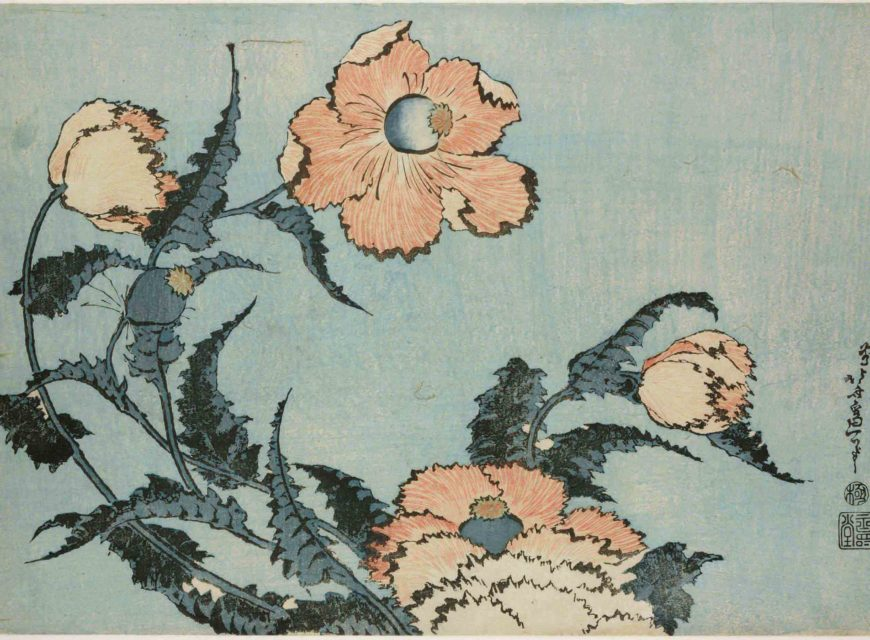 Poppies from Large Flowers. Colour woodblock, 1831-1832. © The Trustees of the British Museum. On display from 25 May - 13 August.